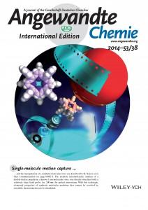 Ikeda_et_al-2014-Angewandte_Chemie_International_Edition