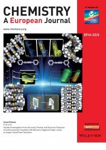 Seki_et_al-2016-Chemistry_-_A_European_Journal